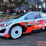 1225_rally_monte_carlo_2014_e5f0482edd